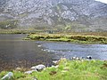 Outflow from Loch Dionard - geograph.org.uk - 1560071.jpg