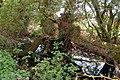 Overgrown brook (2) - geograph.org.uk - 1276920.jpg