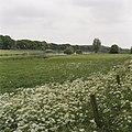 Overzicht van het natuurgebied met de voormalige spoorbrug - Waalwijk - 20396357 - RCE.jpg