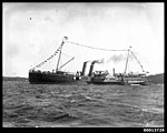 Paddle steamer NEWCASTLE probably at the Pittwater Regatta, 1922-1927 (7935155194).jpg