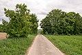 Paderborn - 2016-05-16 - PB-050 Gottegrund (001).jpg