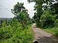 Palakkad, Kerala, India - panoramio (52).jpg