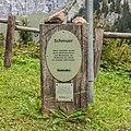 Panixersee (Lag da Pigniu) boven Andiast. (actm) 01.jpg