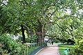 Parc Monceau 20060812 12.jpg
