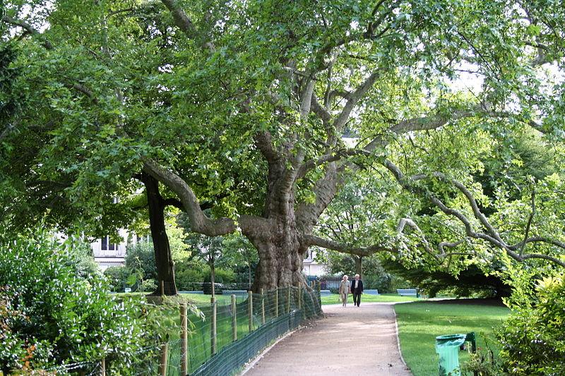 Les plus beaux parcs et jardins de paris vos nouvelles - Parcs et jardins de paris ...