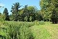 Parc de la Noisette à Antony et Verrières-le-Buisson le 22 août 2017 - 44.jpg