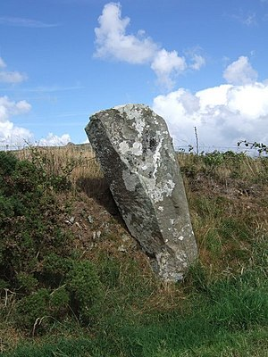 English: Parc y Meirw stone One of the orthost...