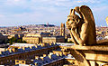 Paris, gargoyles on the terrace of the so called Notre Dame de Paris, 2010.jpg