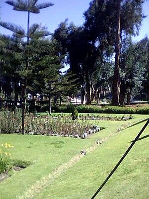 Parque Selva Alegre2