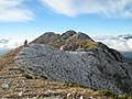 Pe Vf. Ascutit (2156m) - panoramio.jpg