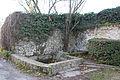 Perthes-en-Gatinais - Ru de Rebais - 2012-11-25 -IMG 8409.jpg