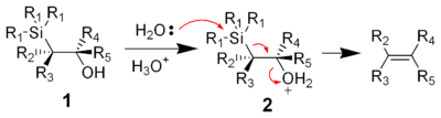 The mechanism of the acid-catalyzed elimination of the Peterson olefination