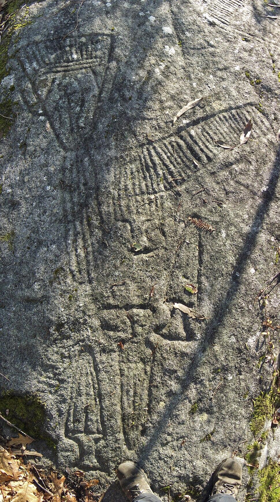 Petroglifos do Castrinho de Conxo