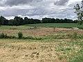 Peupleraie sans arbres Route Amitié St Cyr Menthon 2.jpg