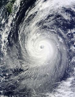 Typhoon Phanfone (2014) Pacific typhoon in 2014