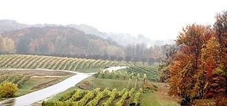 Michigan wine - A northwest Michigan vineyard in fall