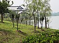 Pictures from a Monastery just outside of Jianhu - panoramio (5).jpg