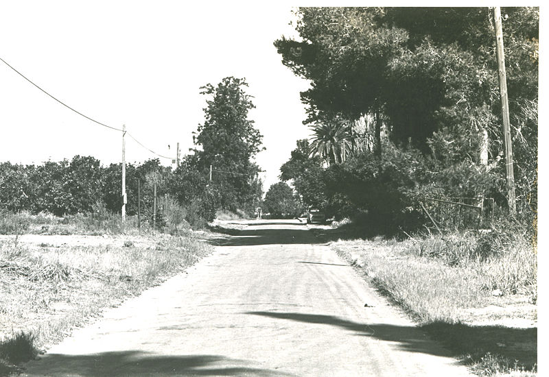 רחוב בהוד השרון
