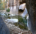 Pine Creek Canyon north fork 2.jpg