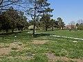 Pioneer Cemetery (Lawrence, KS).jpg