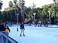 Pista de patinaje sobre hielo 02.jpg