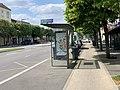 Piste cyclable Avenue Général Leclerc Maisons Alfort 3.jpg