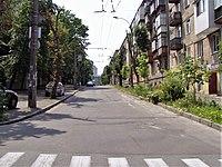 Piterska Street, Kyiv (4).jpg