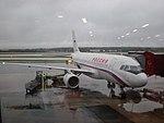 Plane Rossiya.jpg