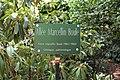 Plaque allée Boule Jardin Plantes Paris 2.jpg