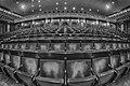 Platea del Teatro Carlo Felice in bw.jpg