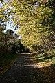 Poles Lane - geograph.org.uk - 944151.jpg
