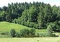 Ponikve Tolmin Slovenia - Grahel Pond.jpg