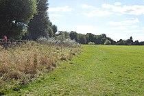 Portholme Meadow 7.jpg