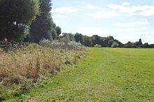 Portholme Meadow 7.jpg