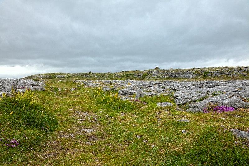 File:Poulnabrone Landscape - HDR (10294517786).jpg