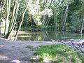 Praha park Cibulka dolni jezirko.jpg