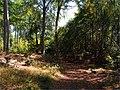 Pred Prielohami - panoramio.jpg