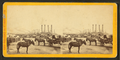 Principal steamboat landing, from Gravier street, looking down the levee, by S. T. Blessing.png