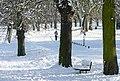Prospect Park - geograph.org.uk - 1659518.jpg