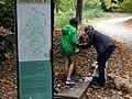Prospect Park Scene - Prospect Park - Brooklyn - New York - USA - 01 (10389216076).jpg