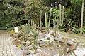Quitos botaniska trädgård-IMG 8808.JPG