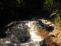 Río Huaynabe cerca a la cascada Garganta de Loro.jpg