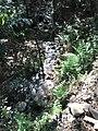 Río que corta debajo una parte del camino en Incallajta.jpg