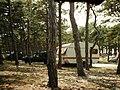 RAZANAC 1981 - panoramio - jean melis.jpg