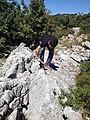 RENK ARAİTIRMASI - panoramio.jpg