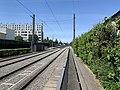 Rails du tramway en sortant du cimetière nouveau de Villeurbanne.jpg