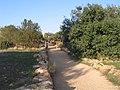 Ramat-ha-Nadiv-manor-trail-841.jpg