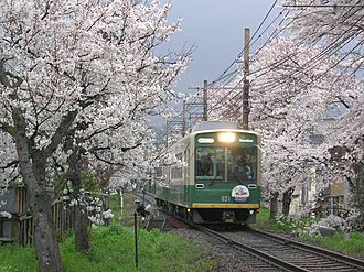 Keifuku Electric Railroad - A Randen tram car under cherry blossoms