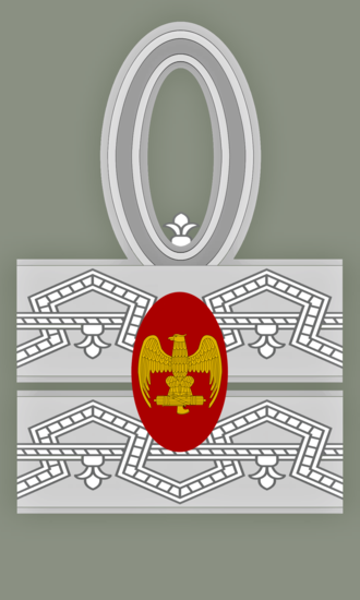 First marshal of the empire - First Marshal of the Empire sleeve rank insignia.