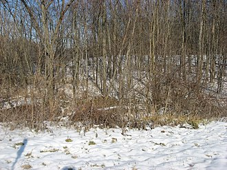 National Register of Historic Places listings in Defiance County, Ohio - Image: Ravine at the Brooke Site